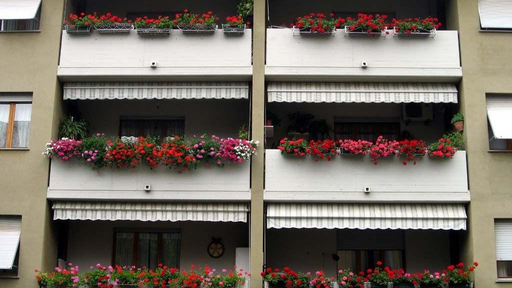 wpid-12890_condominio.jpg