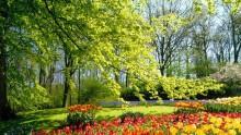 Il decreto cultura interviene sull'autorizzazione paesaggistica