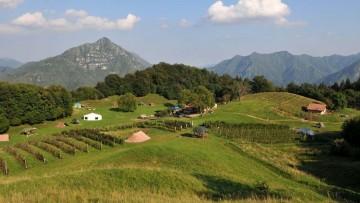 Imu 2014 su terreni agricoli e montani: facciamo il punto