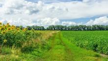 Imu su terreni agricoli e montani: e alla fine proroga fu