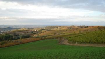 Geometri e agricoltori alleati nel Monferrato