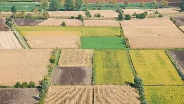 Accatastamento dei fabbricati rurali agricoli
