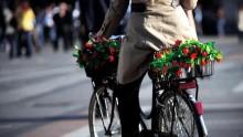 Mobilità sostenibile: premiata Alamada