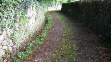 Strade vicinali di uso pubblico: il Tar Lombardia detta le condizioni