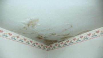 Danni da infiltrazioni di acqua nei condomini? Ecco le regole per chiedere il risarcimento